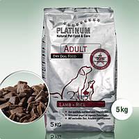 Сухой полнорационный корм для взрослых собак Platinum Ягненок с рисом 5 кг
