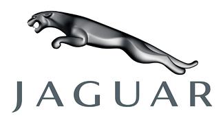 Силіконові чохли Jaguar