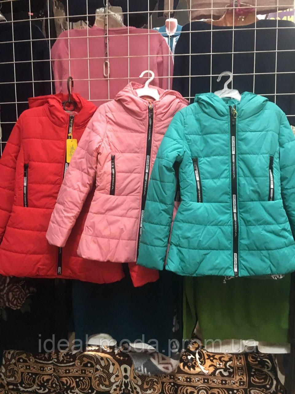 743b32d29bb Куртка весна осень подросток Николь 134 - 152р  продажа