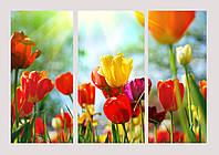 """Модульная картина - триптих """"Цветы"""", фото 1"""