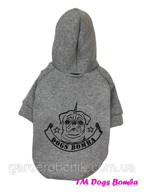 Толстовка, куртка для собаки, кошки Y-118. Одежда для животных