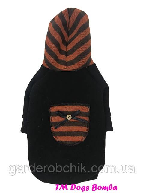 Толстовка, куртка для собаки, кошки Y-115. Одежда для животных