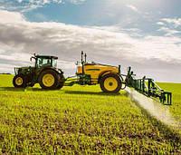 Как правильно вырастить экологически чистую Кукурузу