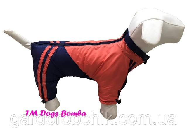 Дождевик, комбинезон для собак с утеплителем MF-11. Одежда для собак