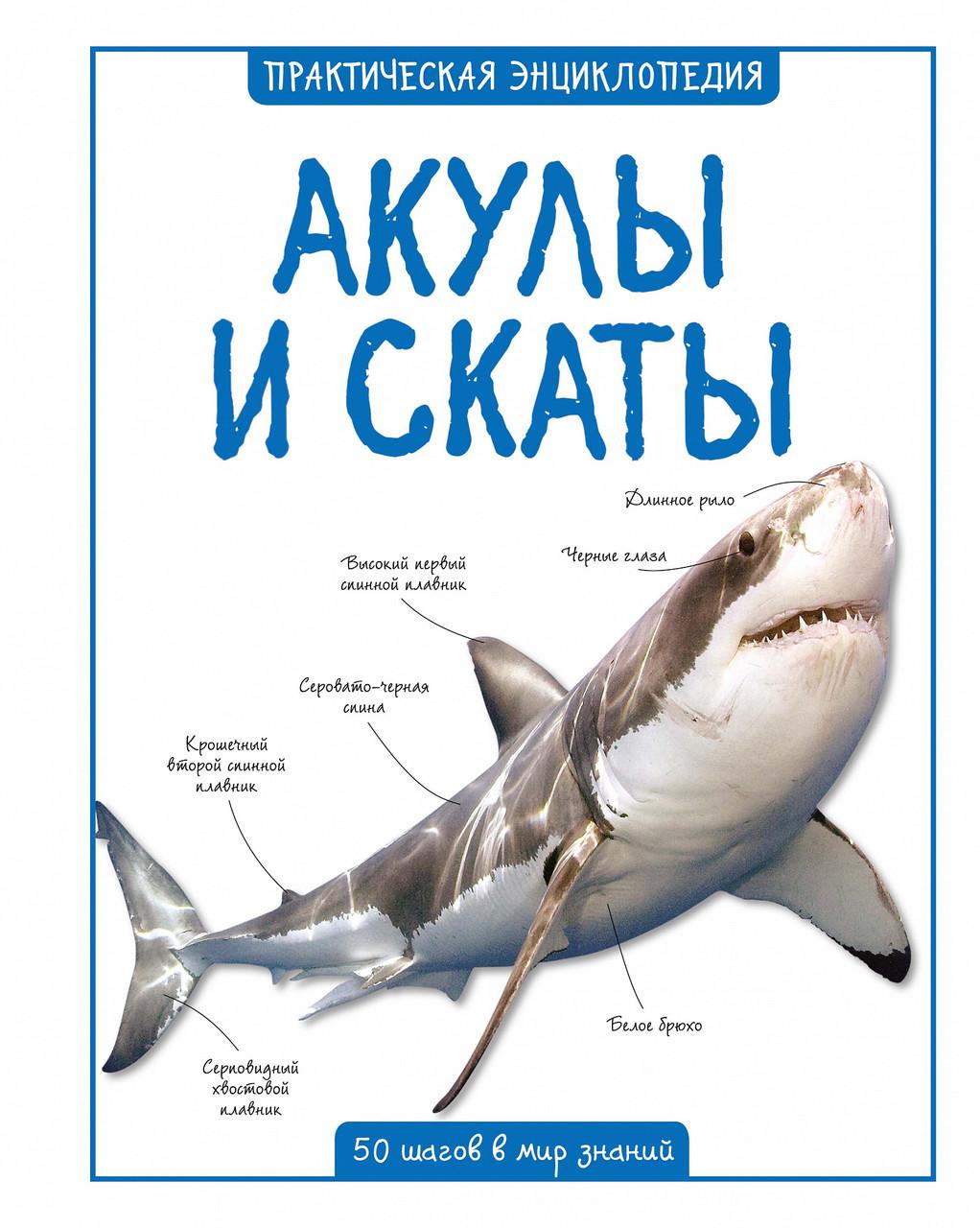 Акулы и скаты «Практическая энциклопедия. 50 шагов в мир знаний»