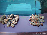 Кора сосновая курупная, фото 1