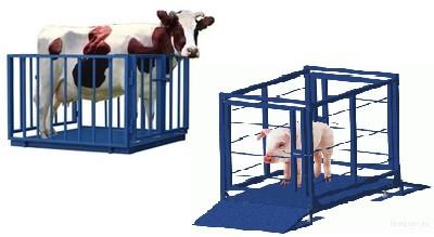 Электронные весы для взвешивания свиней и мелкого рогатого скота  1.5х1.0 с колесами для транспортировки
