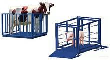 Электронные весы для взвешивания свиней и мелкого рогатого скота  0.7х1.2 с колесами для транспортировки