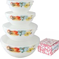 Набор емкостей для хранения продуктов с крышкой Радужный мак 30054-1068 (4 шт.)