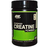 Creatine Powder 1.2 кг (креатин)