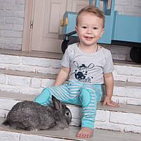 Детский комплект для мальчика «Зебра» (3 предмета), фото 1