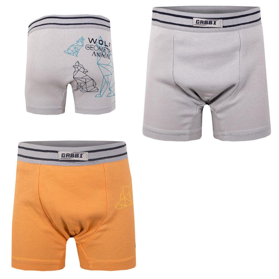 Детские трусы-шорты для мальчика «Волк и медведь» (2 шт.)