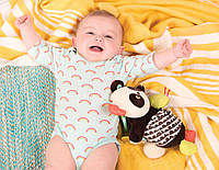 Развивающая игрушка - ПАНДА БО, фото 1
