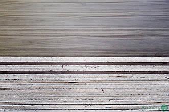 Фанера березова шпонована Горіхом Американським 19 мм - 2,5х1,25 м