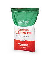 Кукуруза Купава ФАО 320