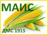Семена кукурузы ДМС 1915 ФАО-190