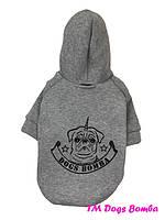 Толстовки и свитера для собак.