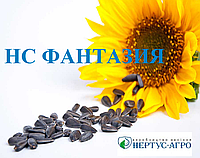 Семена подсолнечника НС ФАНТАЗИЯ (элит), А-Е, Нертус Агро