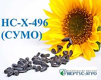 Семена подсолнечника НС-Х-496 (СУМО) (элит), А-Е, Нертус Агро