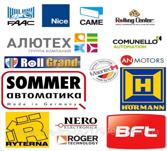 Сервис автоматики ворот NICE FAAC CAME ALUTECH AN-MOTORS GANT RYTERNA MARANTEC HORMANN и другие