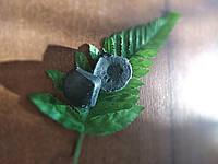 Гидрофильная плитка очищающая для проблемной кожи с маслом цветков александрийского лавра