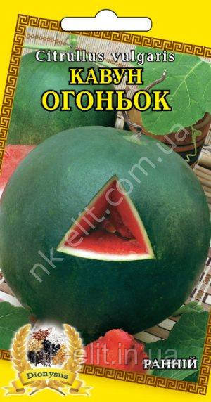 Кавун Огоньок 2г