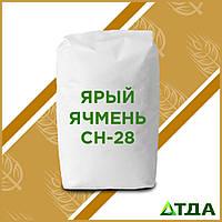 Семена ярого ячменя СН-28