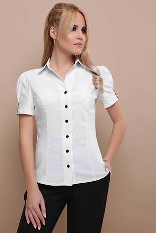 a490b2a04eb5 Классическая женская однотонная белая блузка с черными пуговицами и ...