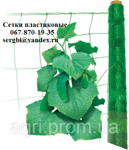 Сетка шпалерная огуречная (1.7*5м)