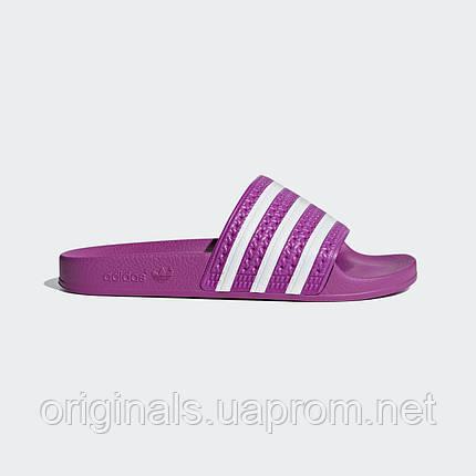 Женские шлепанцы Adidas Adilette W CG6539  , фото 2