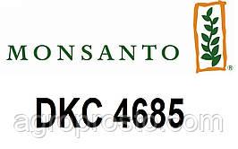 Семена кукурузы Монсанто ДКС 4685 (Dekalb) ФАО 340