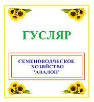Семена Подсолнечника ГУСЛЯР (Экстра)