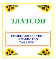 Семена подсолнечника ЗЛАТСОН, 2017 г.у., Авалон