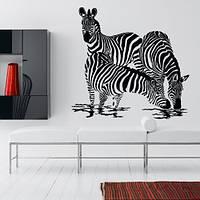 Зебры, декоративная интерьерная наклейка на обои (самоклеющиеся наклейки животные, африканские, Африка)
