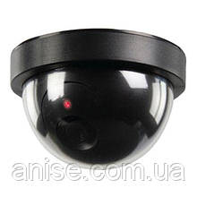 Камера видеонаблюдения МУЛЯЖ. Купольная камера видеонаблюдения МУЛЯЖ