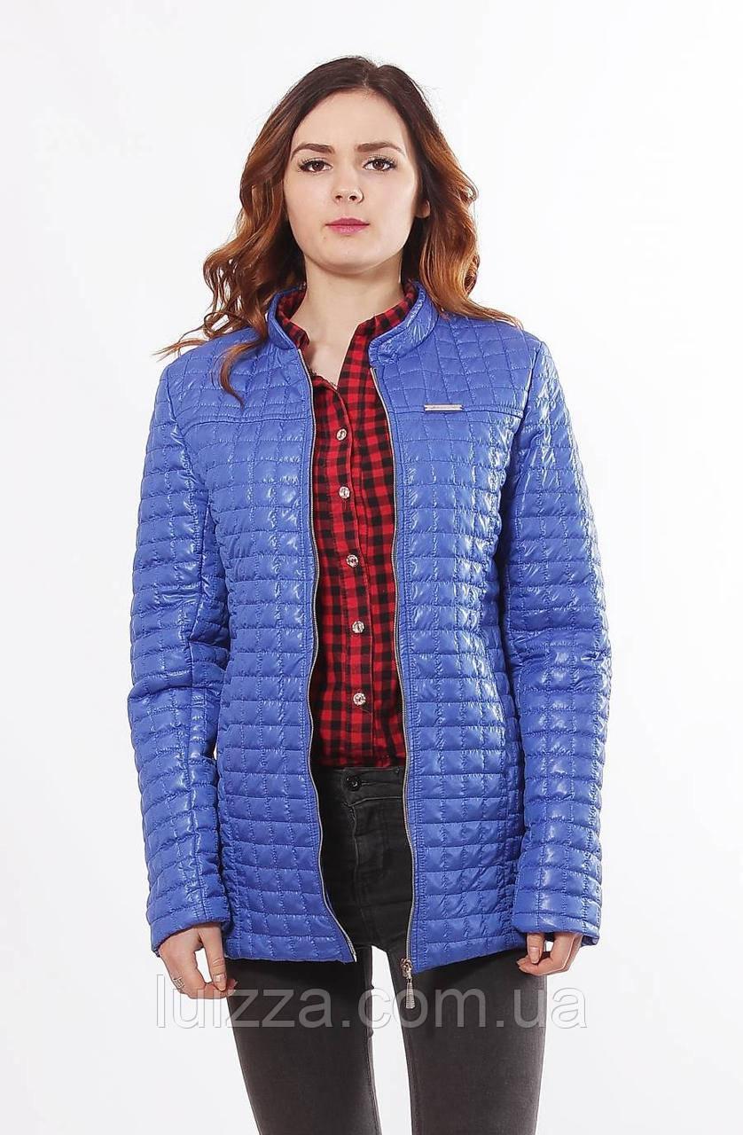 Светло-синяя женская куртка осень-весна 44-68