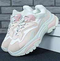 Женские кроссовки Ash Addict Trainers Sneakers Beige White. Живое фото (Реплика ААА+)