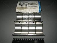Вкладыши шатунные Р1 Д 50 АО20-1 (пр-во ЗПС, г.Тамбов)