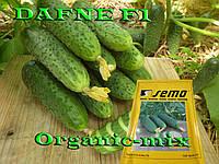 ХИТ 2019 - ДАФНЕ F1 (DAFNE F1), ТМ SEMO (Чехия), 100 семян, фото 1