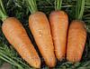Морковь Болтекс F1 0,5 кг. Клоз (Clause).