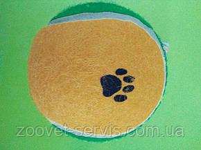 Игрушка для собак мяч теннисный диаметр 10 смC6098487, фото 2