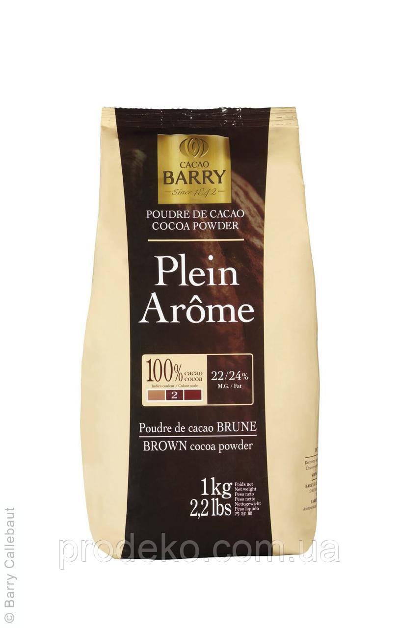 Какао порошок PLEIN AROME темно-коричневый 22-24%,алкал 1кг