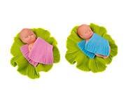 Немовля у капустині (1*21)**