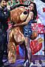 Большая мягкая игрушка медведь Умка 120 см коричневый, фото 3