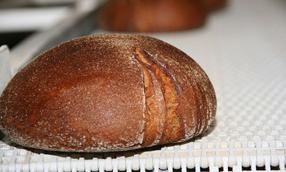 Модульна стрічка Habasit для хлібопекарської промисловості