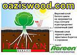 Агроволокно p-50g 1.6*100м черно-белое Agreen итальянское качество, фото 3