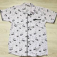 Рубашка для мальчика Kiz Kids ,  (8-12 лет)