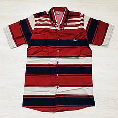 Рубашка для мальчика Calbinos,  (14-15-16 лет)