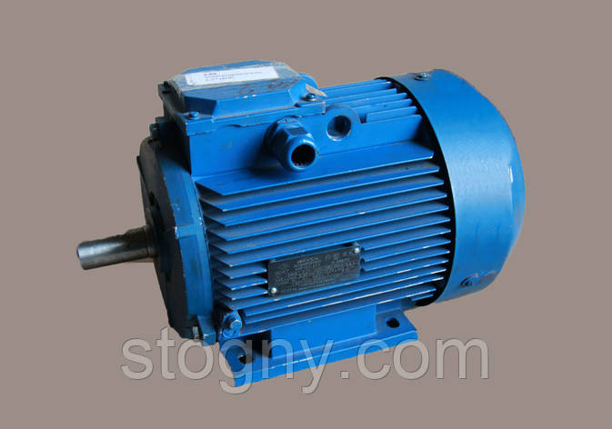 Електродвигун 5,5*1500, фото 2