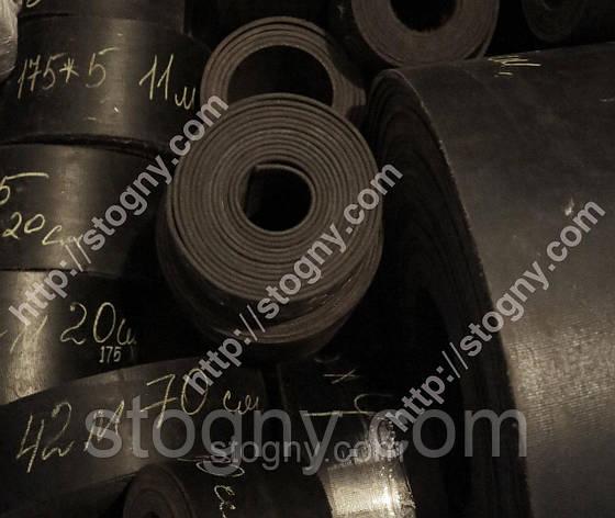 Стрічка норійні з ковшами 300*5, фото 2